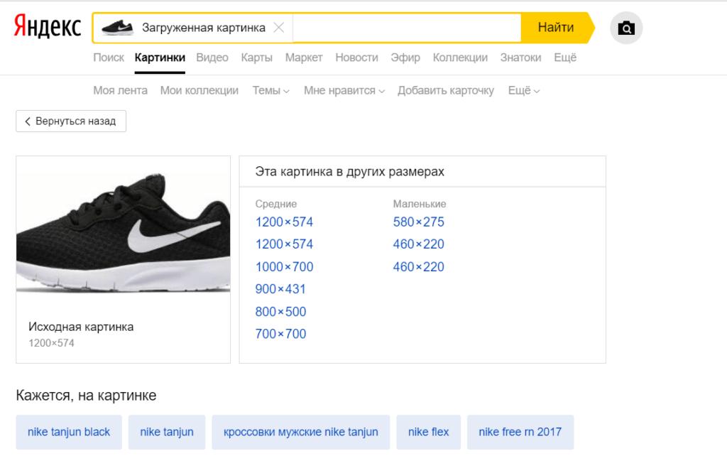 Проверка индекса поисковиков 1