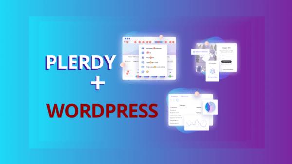 plerdy script installation wordpress m
