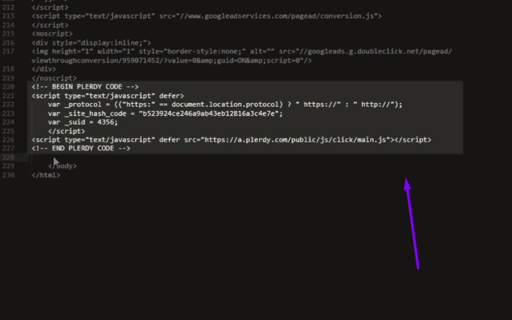 plerdy script installation FTP 5